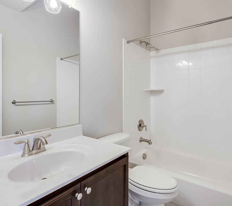 Custom Oakdale Lower Level Bathroom